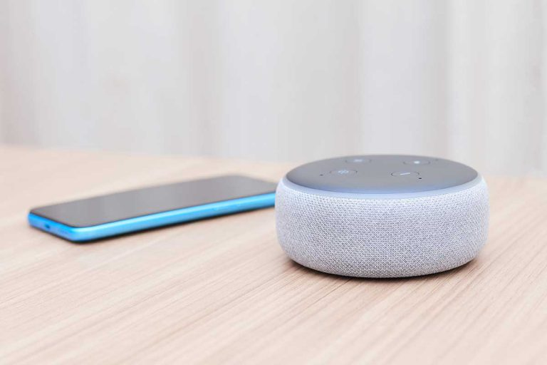 Home Assistant Bluetooth Speaker - Echo Dot 3rd Generation   Alexa – Plum