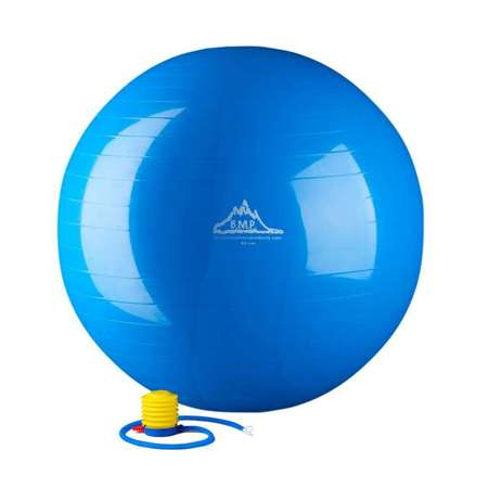 Strength Exercise Stability Ball with Pump